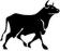 The Tenth Bull